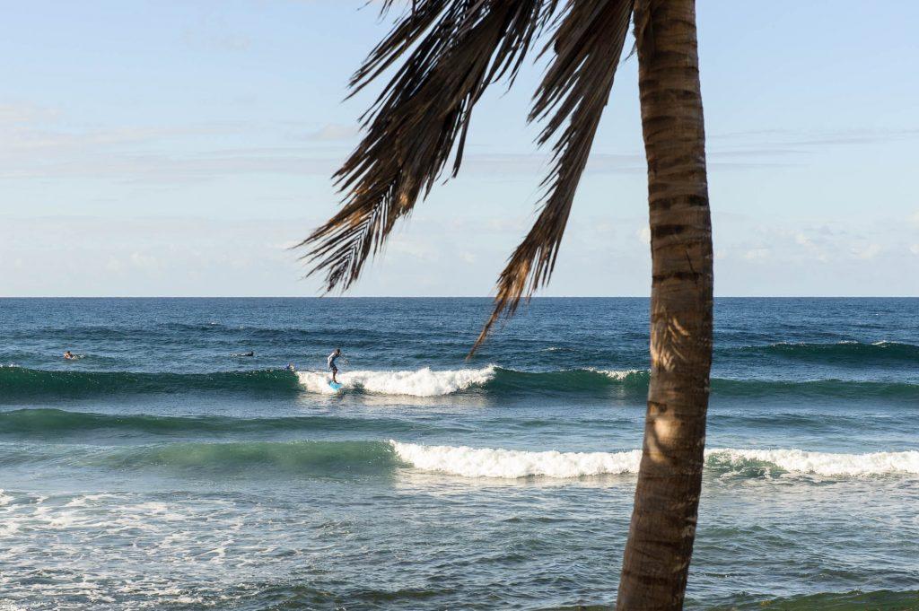 Surfer riding wave.